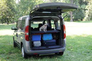opel lancia combo pet lovers edition