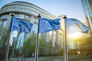 ok del parlamento europeo nuovi test omologazione auto