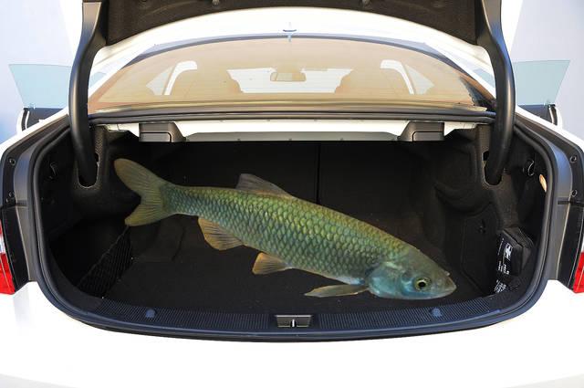 """Gli uffici stampa delle case automobilistiche si ingegnano tutti gli anni  per produrre il """"pesce"""" più divertente. Ne abbiamo selezionati per voi  alcuni a643687916d"""