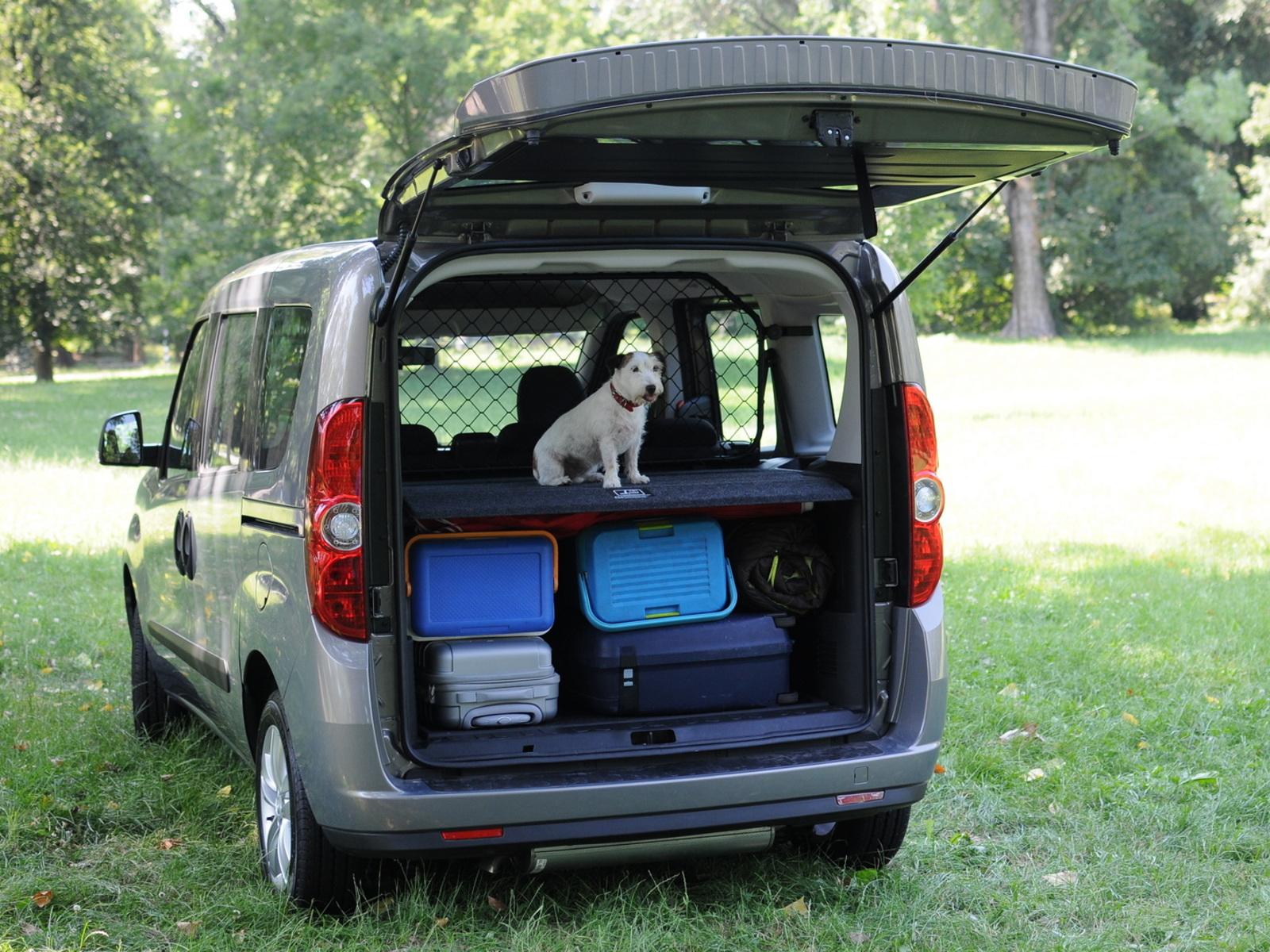 OPEL CORSA D//CORSA e 5-türig griglia cani cani griglia di Protezione Griglia bagagli