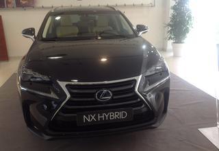 prova lexus nx hybrid 300h f sport 4wd - colle